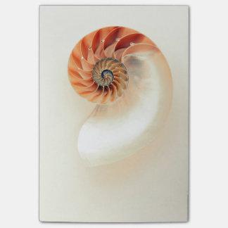 Notas Post-it® Shell de la vida