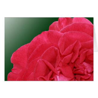 Notecard color de rosa rosado tarjeta pequeña