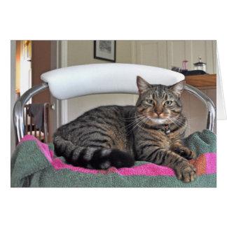 Notecard: Minnie el gato Tarjeta De Felicitación