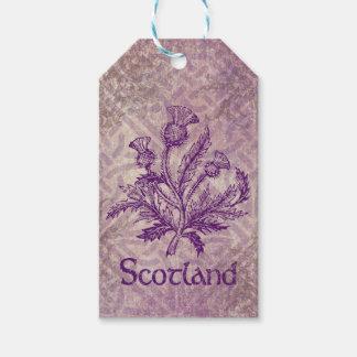 Nudo céltico púrpura del cardo escocés etiquetas para regalos