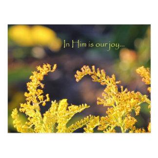 Nuestra alegría tarjeta postal