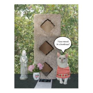 Nueva casa urbana de la dirección del gato postal