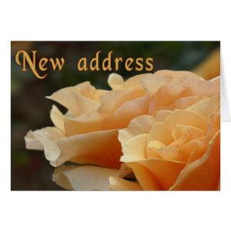 Nuevas tarjetas del personalizable de la dirección