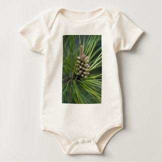 Nuevo crecimiento del pino ponderosa trajes de bebé