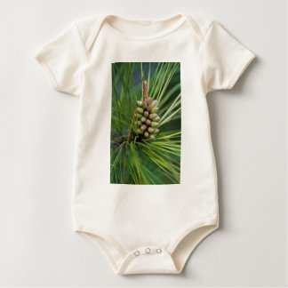 Nuevo crecimiento pintado del pino ponderosa traje de bebé