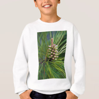Nuevo crecimiento pintado del pino ponderosa camisetas