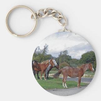 nuevo llavero del bosque de los caballos
