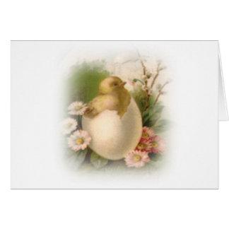 Nuevo polluelo de Pascua Tarjeta