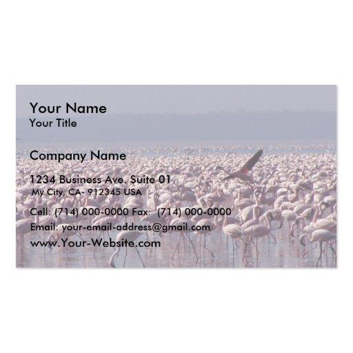 Número de flamencos en la playa tarjeta de negocio