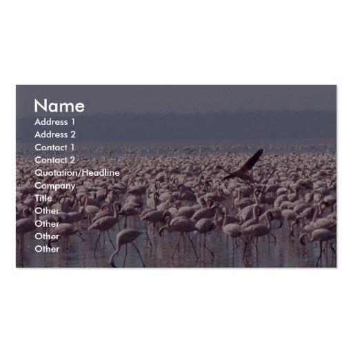 Número de flamencos en la playa tarjeta personal