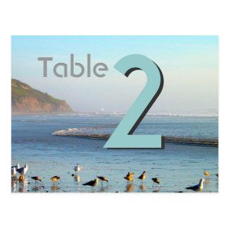 Número de tarjeta de la tabla de las gaviotas postal