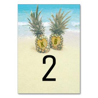 Número tropical de la tabla de destino de la playa