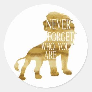 Nunca olvide quién usted es pegatina redonda