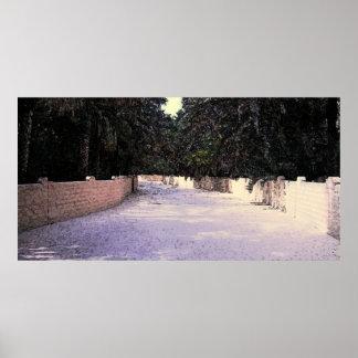 Oasis de Al Ain Posters