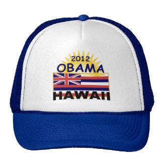 Obama Hawaii 2012 Gorro