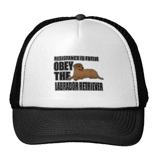 Obedezca al labrador retriever gorro de camionero