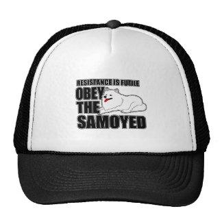 Obedezca al samoyedo gorras