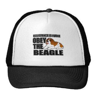 Obedezca el beagle gorros
