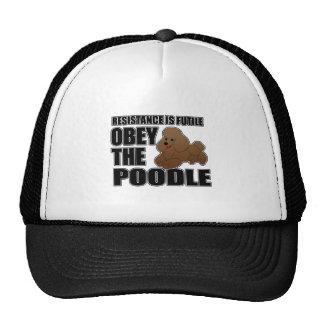 Obedezca el caniche gorras