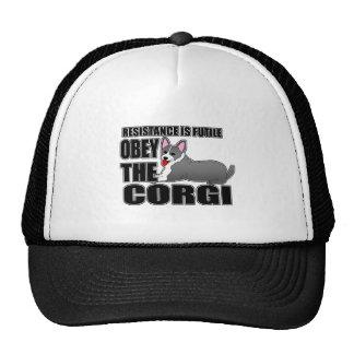 Obedezca el Corgi Galés de la rebeca Gorro