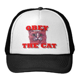 Obedezca el gato gorras