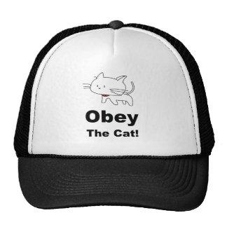 Obedezca el gato gorros bordados