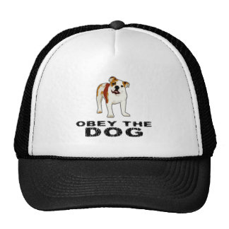 Obedezca el perro gorros bordados
