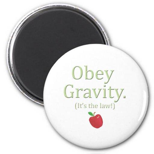 ¡obedezca la gravedad que es la ley! imán para frigorífico
