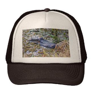 Ocultación del cocodrilo gorras