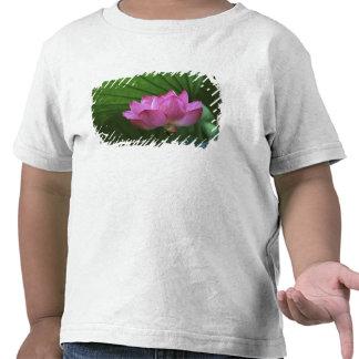 Ohga Lotus, Sankei-en jardín, Yokohama, Japón Camiseta