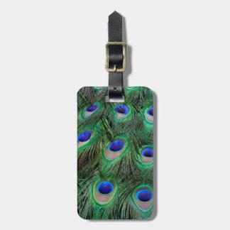 Ojo-puntos en la pluma masculina del pavo real etiquetas para maletas
