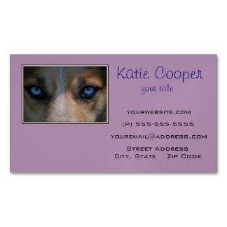 Ojos azules helados del colmillo tarjetas de visita magnéticas (paquete de 25)