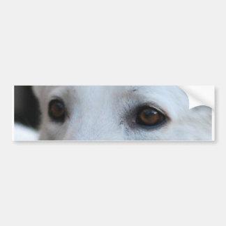 ojos blancos del pastor alemán pegatina para coche