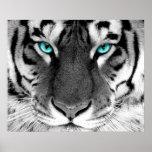 Ojos blancos del poster del tigre