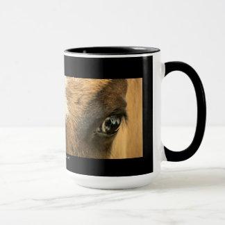 Ojos de una taza del caballo