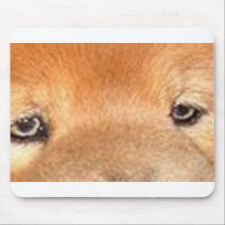 ojos del perro chino de perro chino alfombrilla de ratón