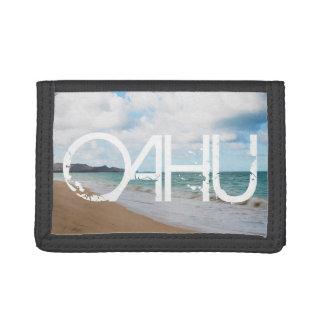 Olas oceánicas y playa de Oahu Hawaii