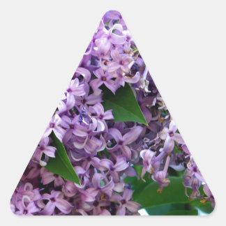 Olores dulces pegatina triangular