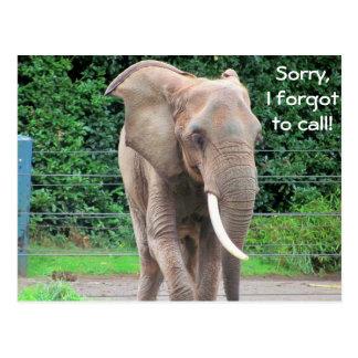 Olvidó llamar el elefante postal