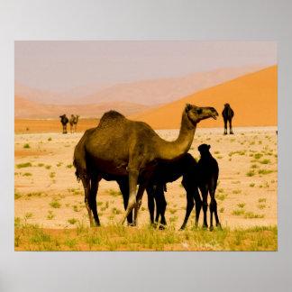 Omán, desierto de Khali del Al de la frotación, ca Póster