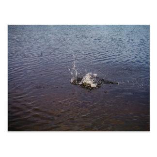 Ondulaciones en un lago, de un salto de los postal