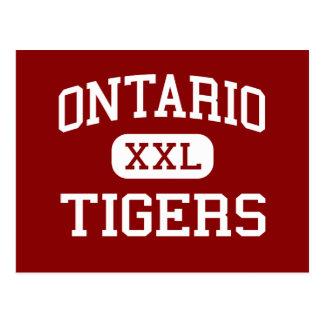 Ontario - tigres - High School secundaria - Postal