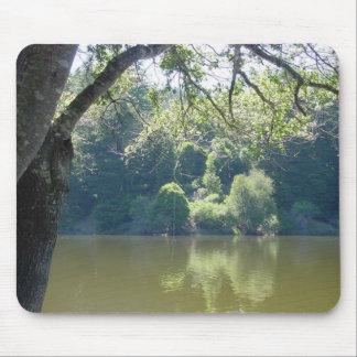 Opinión del lago santa Cruz Alfombrilla De Ratón