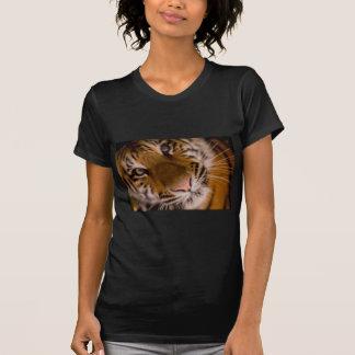 Opinión del primer del tigre camisetas