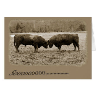 Opinión integral los toros que empalman las cabeza felicitación