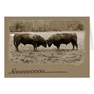 Opinión integral los toros que empalman las tarjeta pequeña