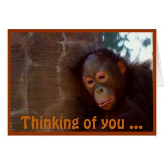 Orangután joven tarjeta pequeña