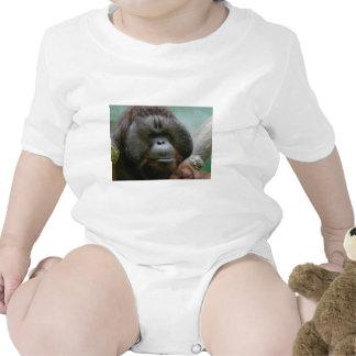 orangután masculino traje de bebé