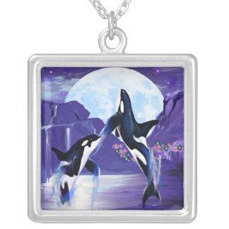 Orcas en una bahía colgante