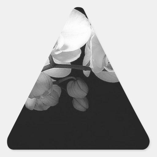 orchid.jpg negro pegatinas de triangulo personalizadas